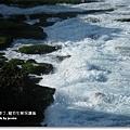 龍坑生態保護區 (172)
