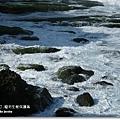龍坑生態保護區 (173)