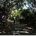 龍坑生態保護區 (93)