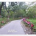 台東森林公園 (110)