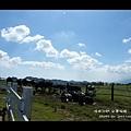 台東初鹿牧場 (74)
