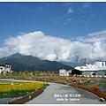 台東池上花海 (64)