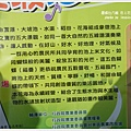 台東池上花海 (78)