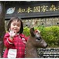 new知本國家森林遊樂區 (21)