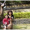 new知本國家森林遊樂區 (26)