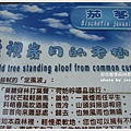 new知本國家森林遊樂區 (38)