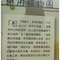 new知本國家森林遊樂區 (45)