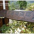 new知本國家森林遊樂區 (41)