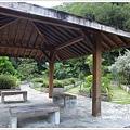 new知本國家森林遊樂區 (92)