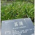 new知本國家森林遊樂區 (94)