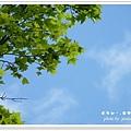 虎年東勢林場 011