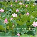 中興新村賞荷趣 (55)