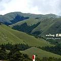 武嶺合歡山 (57)
