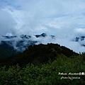 武嶺合歡山 (151)