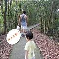 藤山步道健走 (70)