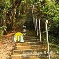 藤山步道健走 (80)