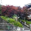 太平山莊紫葉戚 (7)