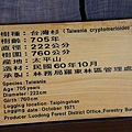 太平山莊紫葉戚 (79)