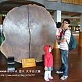 太平山莊紫葉戚 (82)