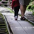 太平山蹦蹦車茂興懷舊步道 (88)