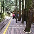 太平山蹦蹦車茂興懷舊步道 (124)