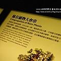 蘭陽博物館 (85)