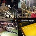 蘭陽博物館 (125)