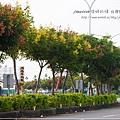 草屯巒樹 (6)