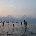 台中高美濕地 (60)