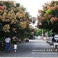 西螺童心園 (84)