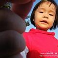 溪州 欒樹 鍋物 (38)