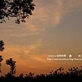 溪州 欒樹 鍋物 (163)