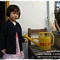 楓樹社區誠實商店 (7)