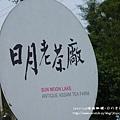 日月老茶廠(1)