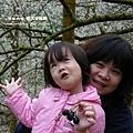 信義賞梅趣羅娜村秘境 121 (26)