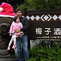 信義賞梅趣 梅子夢工廠 (66)
