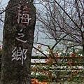 信義賞梅趣 梅子夢工廠 (85)