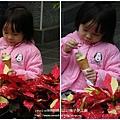 信義賞梅趣 梅子夢工廠 (84)