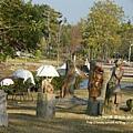 溪州公園隨拍 (64)