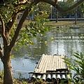 溪州公園隨拍 (93)