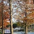 溪州公園隨拍 (126)