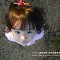 年初四 莿桐向日葵花海 (28)
