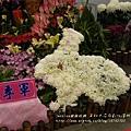 溪州花在彰化 (65)
