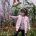 溪州花在彰化 (77)