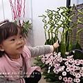 溪州花在彰化 (99)