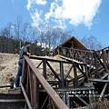 武陵賞櫻花 -雪山登山口篇 (17)