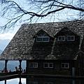 武陵賞櫻花 -雪山登山口篇 (34)