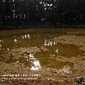 福壽山農場-天池達觀亭 (88)