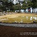 福壽山農場-天池達觀亭 (125)