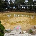 福壽山農場-天池達觀亭 (132)